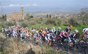 Stagione 2012 : La Rampichiana