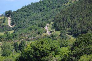 Stagione 2013: V GF del Monte Cucco